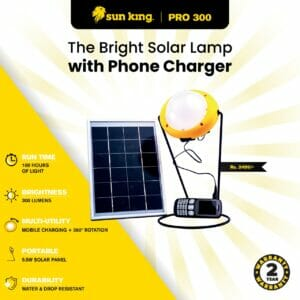 Light and Charger